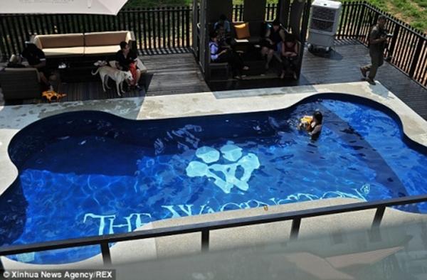 Bể bơi hình khúc xương dễ thương. (Ảnh: Internet)