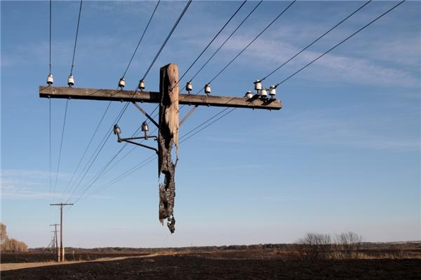 Đây là cây cột bị thiêu trụi bởi một đám cháy ở Nga. (Ảnh: Igor Podgorny)