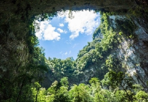 Cánh rừng nguyên sinh được cho là chưa có dấu vết của con người.