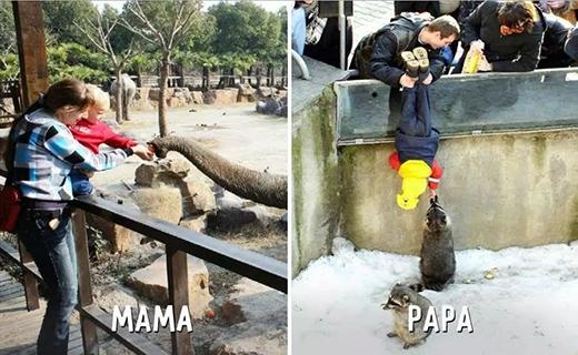 """Mẹ tay bồng tay đỡ giúp con cho voi ăn, còn bố thì: """"Chồn thôi mà con, cứ vô tư đi."""" (Ảnh: Internet)"""
