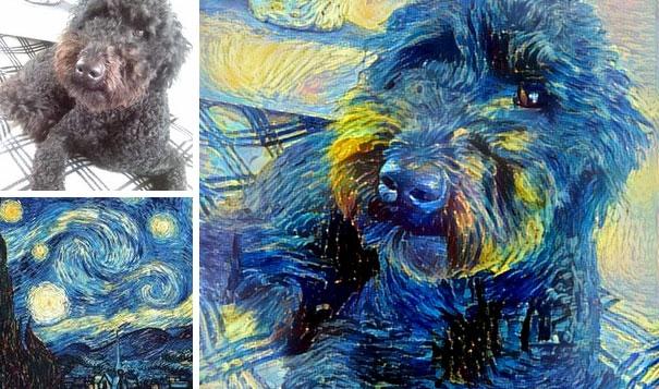 Một chút nghệ thuật cho em cún cưng.(Ảnh: Internet)