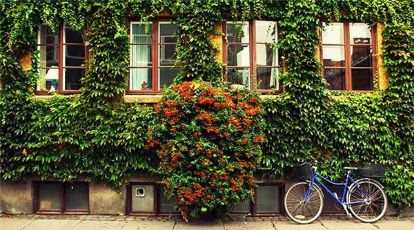 Thụy Điển cũng nổi tiếng là một đất nước có lối sống xanh đáng ngưỡng mộ. (Ảnh: Internet)