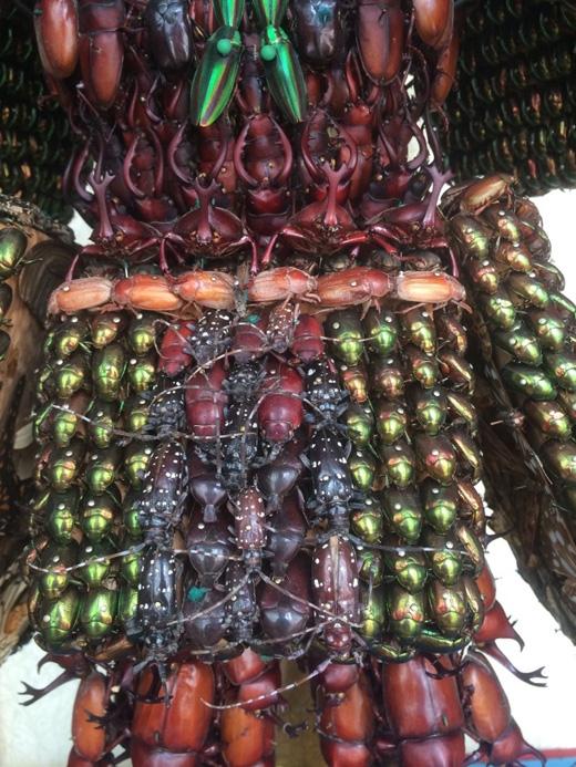 Tổng cộng 5.000 con bọ đã hiến xác cho tác phẩm nghệ thuật này.(Ảnh: kotaku)