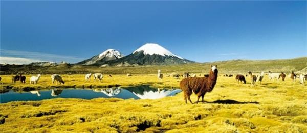 Chile trong trẻo và thanh bình.(Ảnh: Internet)