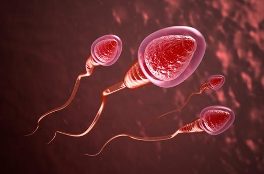 Chất lượng tinh trùng ở nam giới các nước trên thế giới đang giảm dần.(Ảnh: Internet)