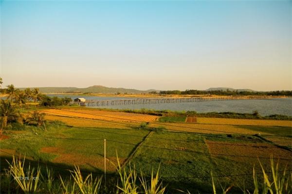 Với chiều dài khoảng 700m, cầu Ông Cọp được mệnh danh là cầu gỗ dài nhất Việt Nam. (Ảnh: Phạm An)