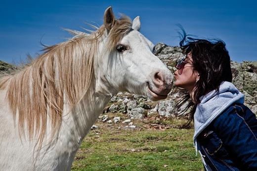 Chỉ vì hôn ngựa mà bị chồng li dị, quả là phân biệt đối xử với ngựa. (Ảnh minh họa: Internet)