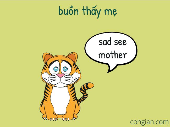 Không hiểu không cười chứng tỏ không phải người Việt