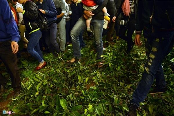 Giới trẻ vô tư giẫm đạp lên vườn hoa ở Hồ Gươm, khiến nơi đây bỗng chốc biến thành bãi đất trống. Ảnh: Anh Tuấn.