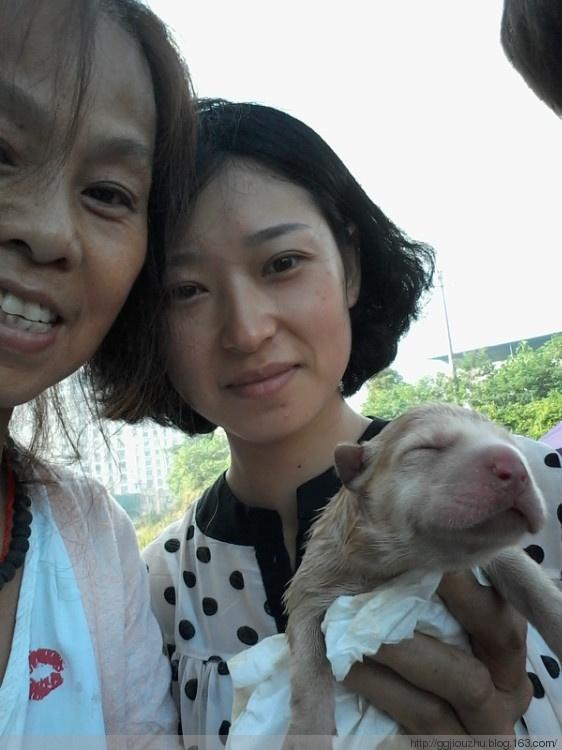 Bạn gái Trung Quốc cùng một số tình nguyện viên khác đã giải cứu những chú chó trong đoàn vận chuyển, đặc biệt là bé cún mới chào đời. (Ảnh: Internet)