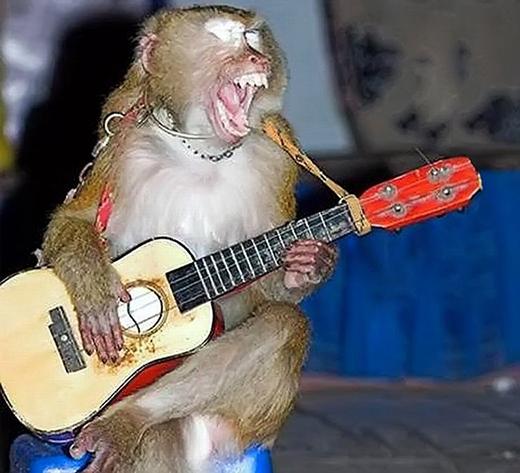 """Để anh hát bài """"Tây du ký"""" cho mà nghe nhé."""