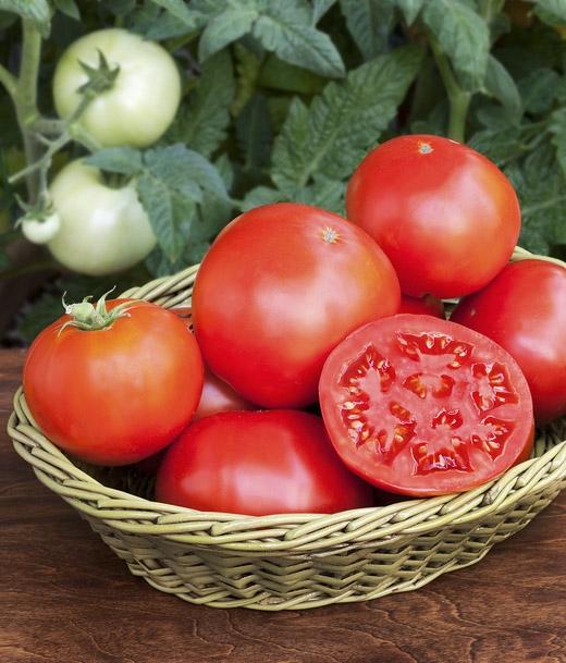 Chúng ta luôn mặc định cà chua là rau củ, vì nó luôn được bán ở quầy hàng rau củ. (Ảnh: Internet)