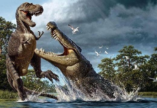 Chúng sở hữukích thước khổng lồ với12 đến 15 mét chiều dài và nặng gần 10 tấn.(Ảnh: Internet)