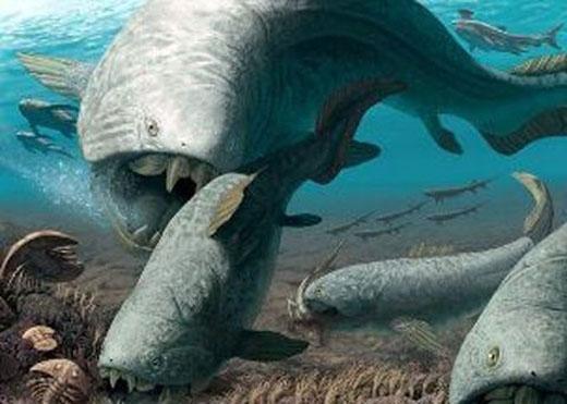 Dunkleosteus thườnggiết chết con mồi rồi sau đó nuốt chửng. (Ảnh: Internet)