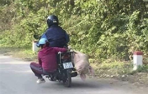 Bức ảnh cụ già ngủ say trên xe máy gây tranh cãi lớn trên mạng xã hội