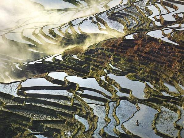 Tận dụng tối đa yếu tố như ánh sáng và thời tiết,Thierry đã tạo ra những bức ảnh đẹp hơn cảtranh vẽ. Hình ảnh thửa ruộng màu hồng dưới sự phải xạ của ánh sáng mặt trời chính là điểm nhấn đắt giá nhất của tấm ảnh này.(Ảnh: Internet)   Những mảng nước đọng lại trong ao, trải dài từ thửa ruộng này đến thửa ruộng khác, nối tiếp nhau tạo thành những dòng suối nên thơ. (Ảnh: Internet)   Nắm bắt được sự di chuyển của ánh sáng mặt trời qua từng thời điểm trong ngày,Thierry đã tạo ra những bức ảnh với nhiều thần thái khác nhau chỉ trong một địa điểm. (Ảnh: Internet)   Những mảng ruộng đẹp như mơ gợingười ta đếnnhững câu chuyện thần tiên thơ mộng. (Ảnh: Internet)