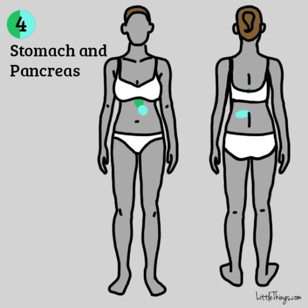 Nếu bị đau ở hai vị trí trên hình thì có khả năng dạ dày và tuyến tụy của bạn đang không ổn. (Ảnh: Maya Borenstein)