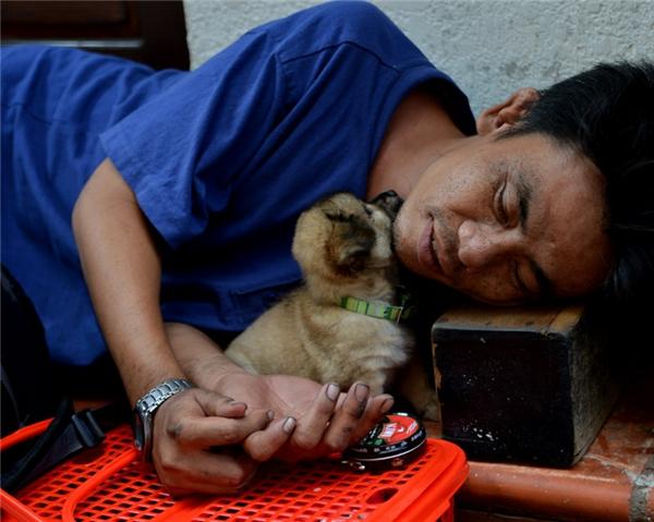 """""""Đôi bạn"""" dựa vào nhau mà sống giữa Sài Gòn.(Ảnh: Internet)"""