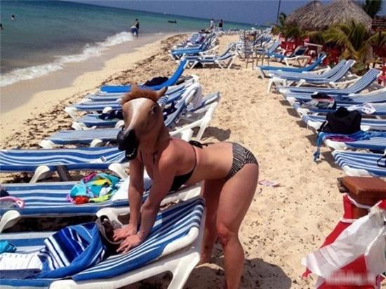 """Ô hay, """"ngựa"""" ở đâu mà lại lạc vào bãi biển thế này."""