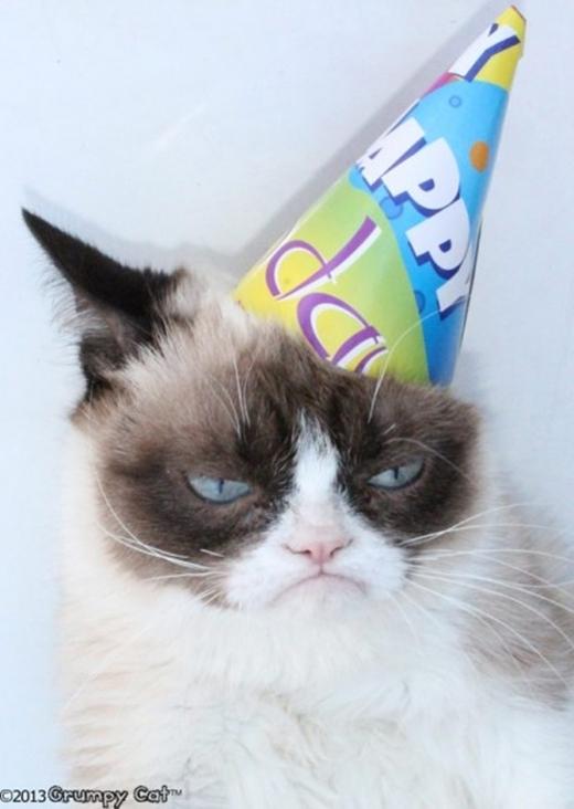 """Anh chàngGrumpy """"nhăn nhó"""" này được chủ nhân tổ chức sinh nhật """"hoành tráng"""" không thua kém bất kì ai đâu nhé. Nhưng có vẻ như chú takhông vui lắm với bức ảnh trên chiếc bánh gato thì phải.(Ảnh: Internet)"""
