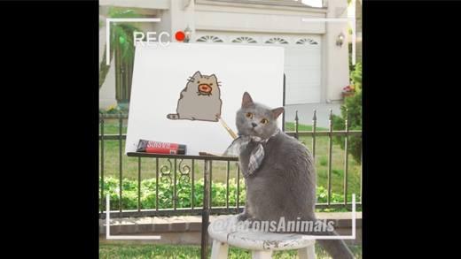 Lộ diện chú mèo sống ảo nhất hành tinh