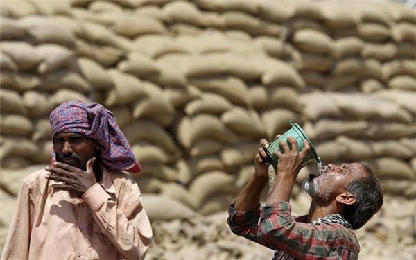 Người nông dân uống nước tại thành phố Chandigarh ngày 19/4. Do trời nắng nóng sớm bất thường (cao điểm của mùa nóng tại Ấn Độ là vào khoảng tháng 5), chính phủ đã yêu cầu trường học cho phép học sinh ở nhà, các công trình ngoài trời tạm ngưng hoạt động để bảo đảm sức khỏe cho người lao động.