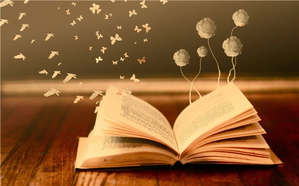 Sách là một kho tàng kiến thức rộng lớn nơi mà bạn có thể đắm chìm để nhìn thấy cả thế giới thật rộng lớn ngoài kia. (Ảnh: Internet)