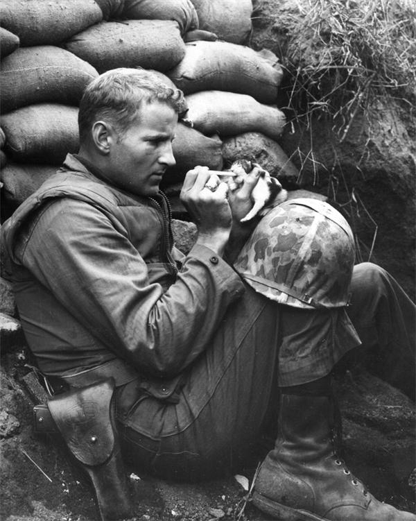Trung sĩ Frank Praytor cho chú mèo con 2 tuần tuổi ăn sau khi mẹ chú bị giết hại.