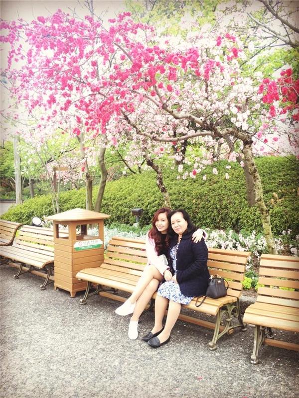 Hoa đào phủ hồng cả lâu đài Nagoya.(Ảnh: Diệu Bình)