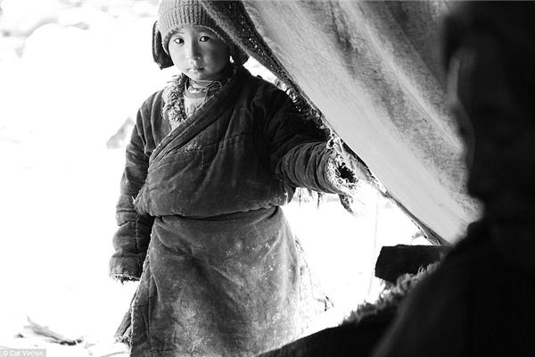 Sinh ra trong một gia đình du mục sống ở cao nguyên Chang Tang trên dãy Himalayas, Jimmai là một phần của lối sống đang ngày dần mai một.