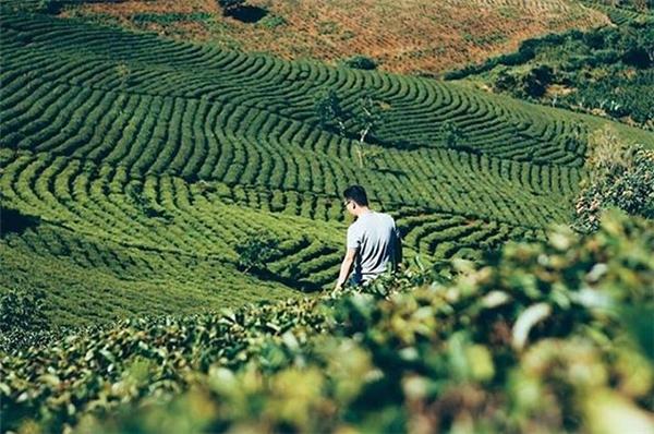 Những kiểu ảnh đậm chất tôi-đang-đi-du-lịch-đó của người trẻ Việt