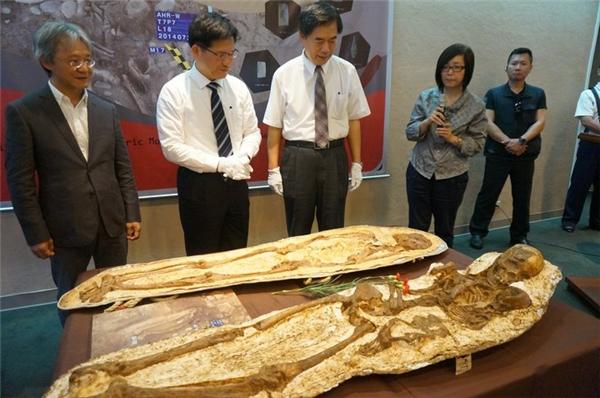 Hóa thạch mẹ ôm conđược trưng bày tại Bảo tàng Khoa học tự nhiên Đài Loan. (Ảnh: Internet)