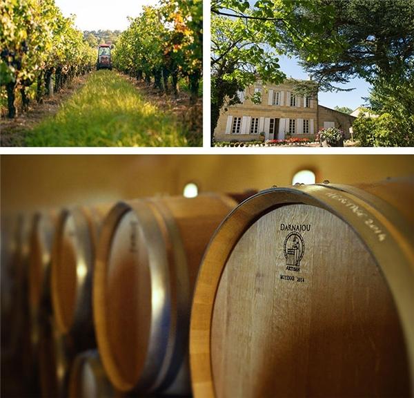 Những góc nhìn khác về trang trại rượu nho của Triệu Vy. (Ảnh: Internet)
