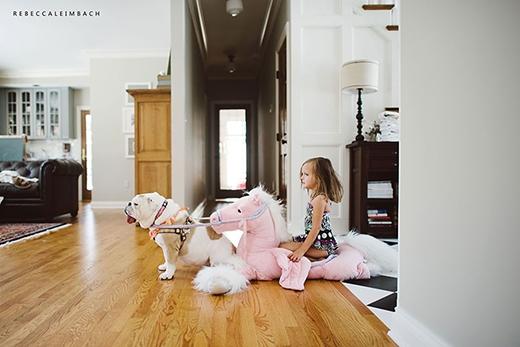 Công chúa mặc đồ bơi, cưỡi ngựa hồng do... chó kéo đi tham quan khắp nhà. Chuyến đi này đã không... kết thúc tốt đẹp. (Ảnh: Rebecca Leimbach)