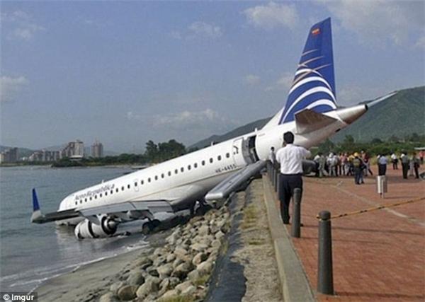 Đang bay thì phát hiện trời nóng quá, đi tắm. (Ảnh: Internet)
