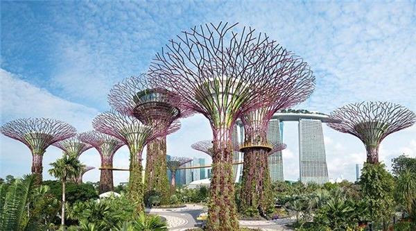 Theo chia sẻ trên fanpage của chương trình, có thể những địa điểm sau sẽ là nơi mà Đêm hội chân dài 10 sẽ ghi hình. Khung cảnh hoành tráng, hiện đại của Singapore chắc chắn sẽ mang đến những thước phim đẹp mắt, lung linh.