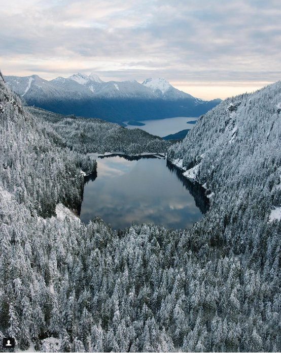 ...hoặc khi ngắm nhìn khung cảnh Bờ biển Tây Canada đẹp đến nghẹt thở. (Ảnh: bradleyfriesen)