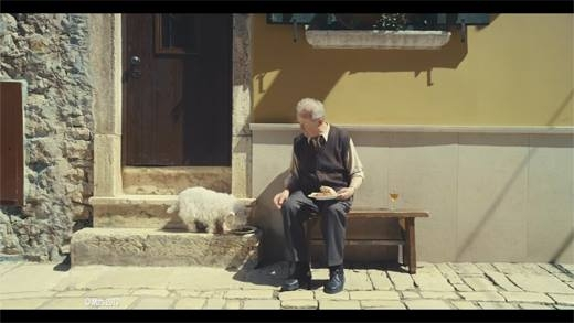 Cảm động với tình bạn tri kỉ của ông lão với chú chó