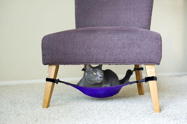 7. Khi mèo cưng cũng được tận hưởng không gian thoải mái trên cùng một chiếc ghế với chủ. (Ảnh: Internet)