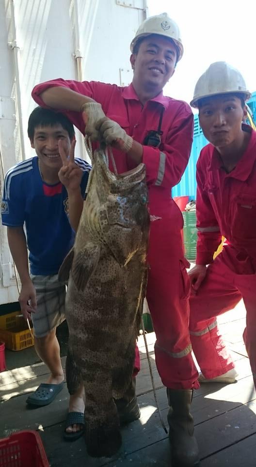 """Ai nấy đều tỏ ra vui mừng khi câu được những con cá """"siêu bự"""" như thế này. (Ảnh: Internet)"""