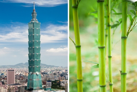 Tòa nhà chọc trời ở Đài Bắc, Đài Loan lấy cảm hứng từ cây tre.