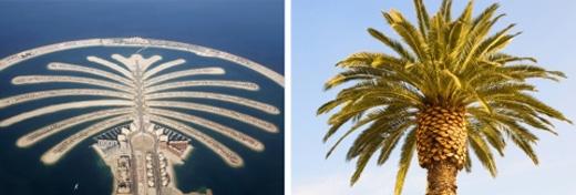 Quần đảo Palm ở Dubai.