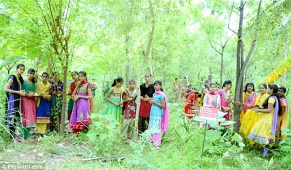 Ở ngôi làng Piplantri ở Ấn Độ, mỗi khi 1 bé gái chào đời, người dân sẽ trồng 111 cây xanh.