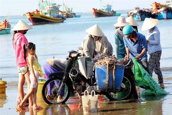 Chợ Phan Thiết - Trải nghiệm đi chợ ở Phan Thiết để tìm hiểu cái hay, cái lạ của người dân vùng biển