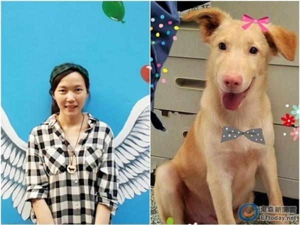 Tất cả đã khiến Jane Cheng Chihquyết định chọn lấy cái chết chomình bằng chính loại thuốc trợ tửmà cô dùng cho chó.