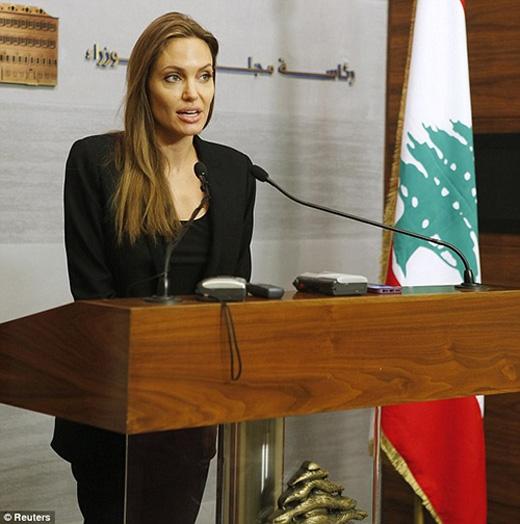Cô là đại sứ thiện chí về người tị nạn của Liên Hợp Quốc, những hoạt động xã hội đã chiếm nhiều tâm sức.