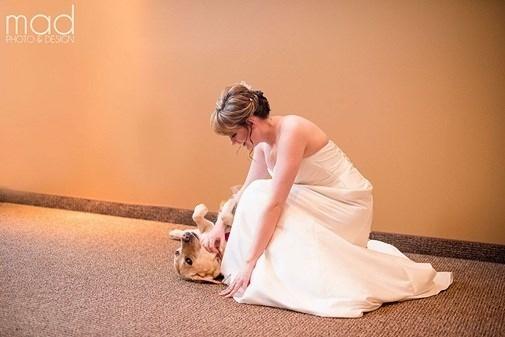 Trong bức hình, có thể thấy chú chó phù dâu có tên là Bella đã đến bên trấn an cô chủ, tạo sự thoải mái và hạnh phúc trước khi cô lên xe hoa về nhà chồng.