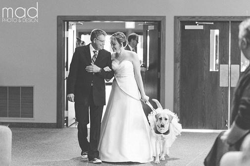 Theo Parrott, cô cảm thấy rất lo lắng trước giờ vào lễ đường nhưng chú chó đáng yêu Bella đã liếm tay cô hay dựa vào cô, dùng cân nặng của nó để khiến cô dâu mới tập trung vào nó thay vì những thứ xung quanh.