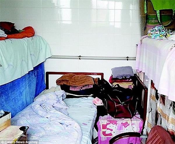 Cảm động với lí do gia đình này cơ cực sống trong nhà vệ sinh 10 năm