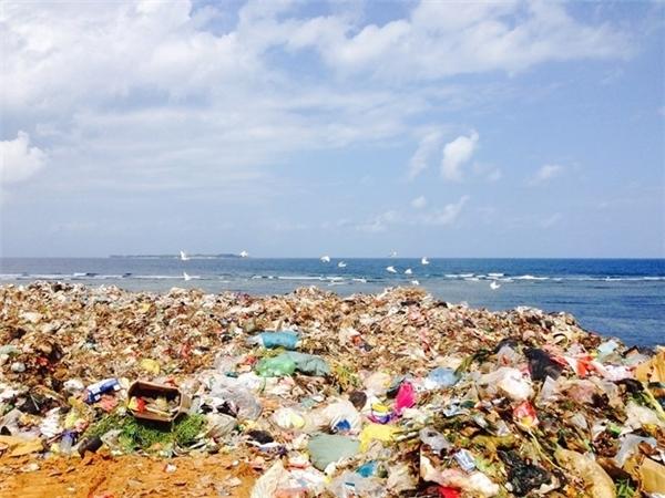 """Đảo Lý Sơn nổi tiếng cũng """"bon chen"""" với thế giới bằng cảnh tượng kinh hãi này."""